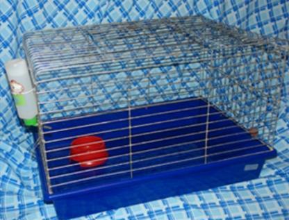 Купить Кором для кошек Josera Leger (Йозера Легер) 10 кг